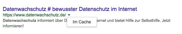 Google Cache - Seiten anzeigen, löschen & Alternativen
